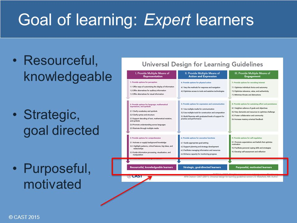 © CAST 2015 Goal of learning: Expert learners Resourceful, knowledgeable Strategic, goal directed Purposeful, motivated