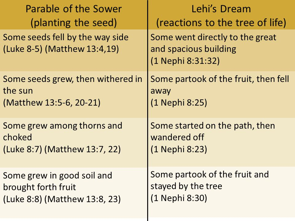 Parable of the Sower (planting the seed) Lehi's Dream (reactions to the tree of life) Some seeds fell by the way side (Luke 8-5) (Matthew 13:4,19) Some went directly to the great and spacious building (1 Nephi 8:31:32) Some seeds grew, then withered in the sun (Matthew 13:5-6, 20-21) Some partook of the fruit, then fell away (1 Nephi 8:25) Some grew among thorns and choked (Luke 8:7) (Matthew 13:7, 22) Some started on the path, then wandered off (1 Nephi 8:23) Some grew in good soil and brought forth fruit (Luke 8:8) (Matthew 13:8, 23) Some partook of the fruit and stayed by the tree (1 Nephi 8:30)