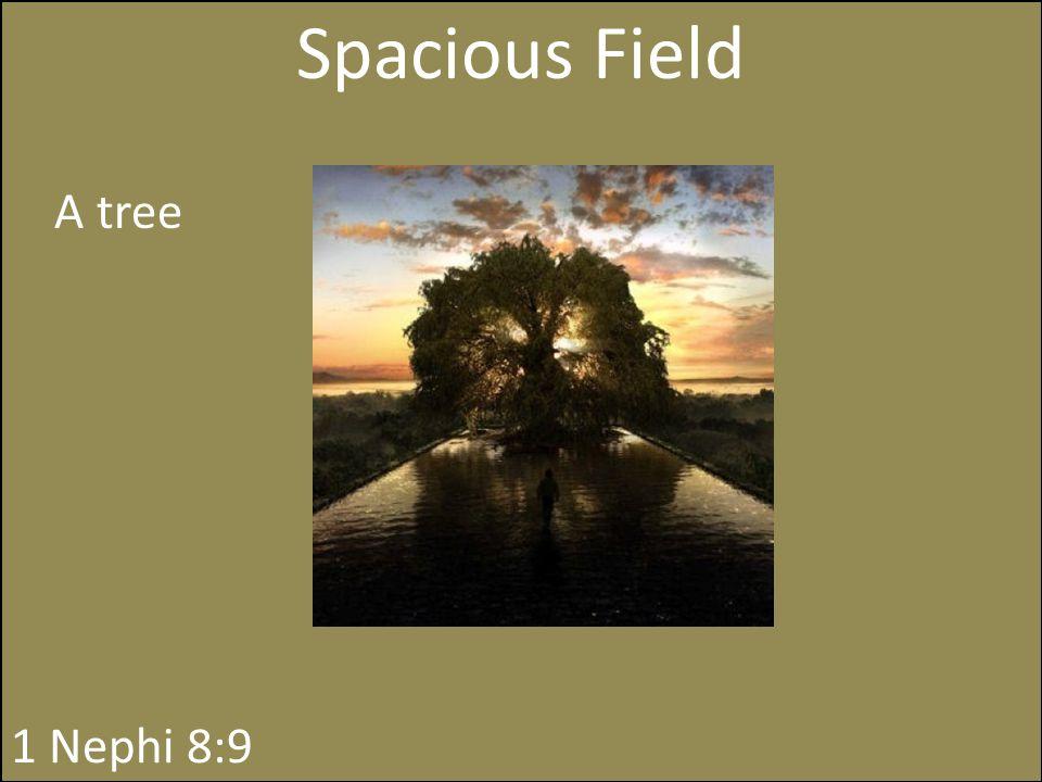 Spacious Field A tree 1 Nephi 8:9