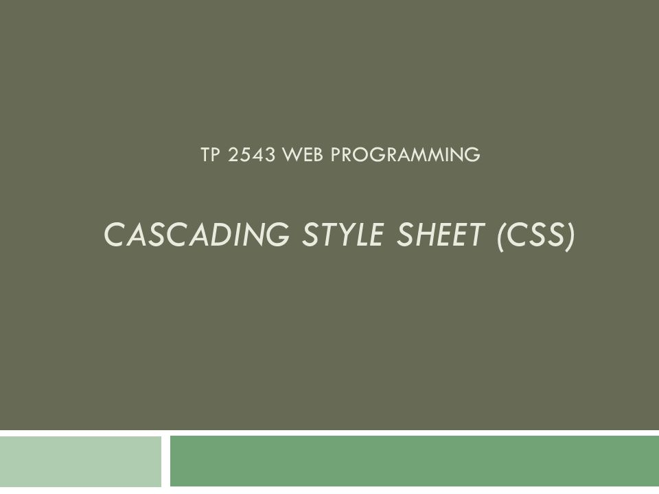 TP 2543 WEB PROGRAMMING CASCADING STYLE SHEET (CSS)