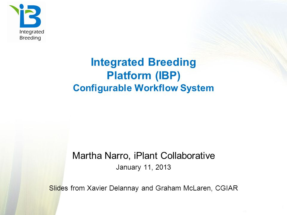 IBP marker services The new marker services concept based on high- throughput SNP genotyping was operational in 2011 Decision to focus on a single SNP genotyping provider (KBioscience, UK) SNP conversion to KBioscience platform almost complete GCP funds the conversion of 1,000-2,000 SNPs for each crop of interest Assays available to customers after that (between 8-10 cents/dp) First set of genotypes fingerprinted as part of conversion process SSR genotyping support still being provided by current labs as needed BecA ICRISAT