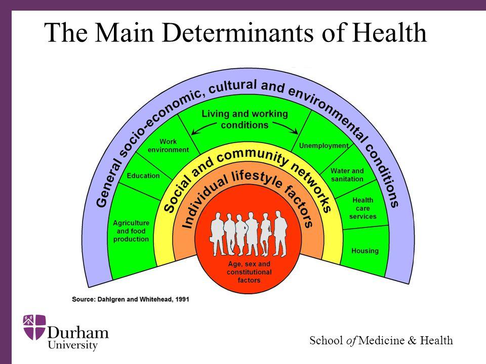 ∂ School of Medicine & Health Evolutionary Trends Source: The Economist, 12 November 2003.