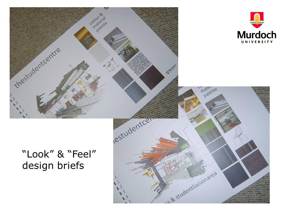 """""""Look"""" & """"Feel"""" design briefs"""