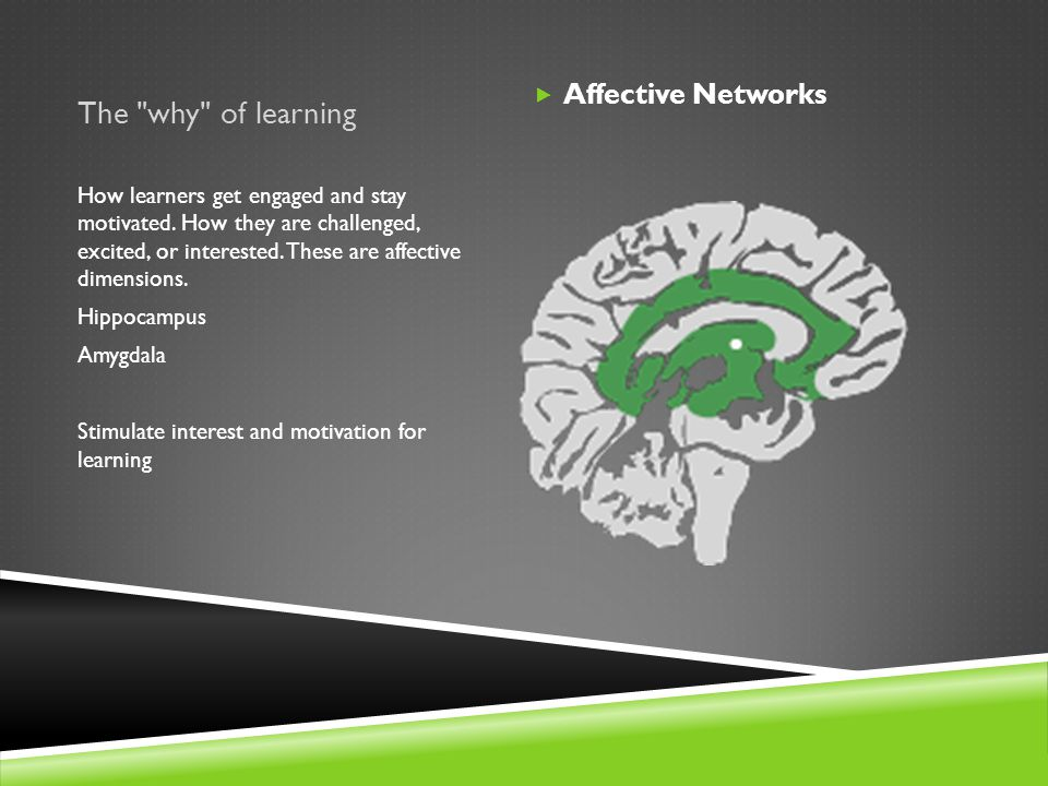 The why of learning  Affective Networks How learners get engaged and stay motivated.