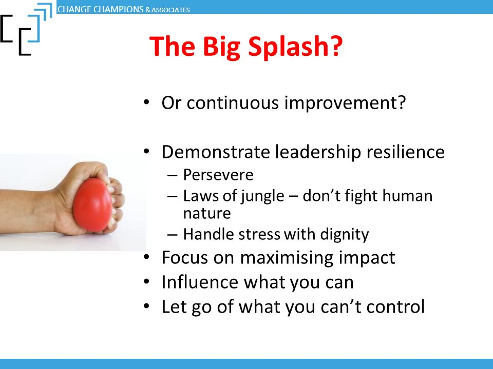 The Big Splash? Or continuous improvement? Demonstrate leadership resilience – Persevere – Laws of jungle – don't fight human nature – Handle stress w