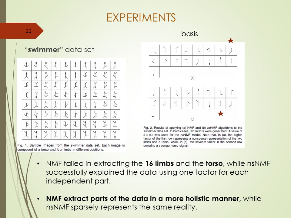 EXPERIMENTS swimmer data set 22 NMF failed in extracting the 16 limbs and the torso, while nsNMF successfully explained the data using one factor for each independent part.