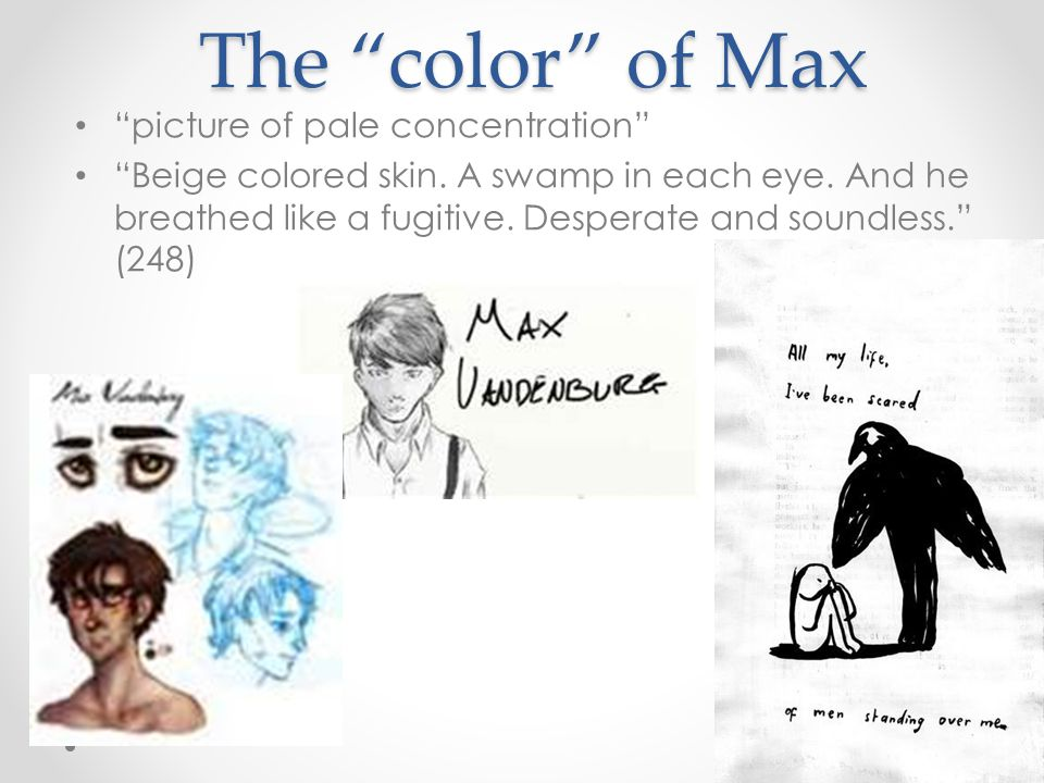 "The ""color"" of Max ""picture of pale concentration"" ""Beige colored skin. A swamp in each eye. And he breathed like a fugitive. Desperate and soundless."