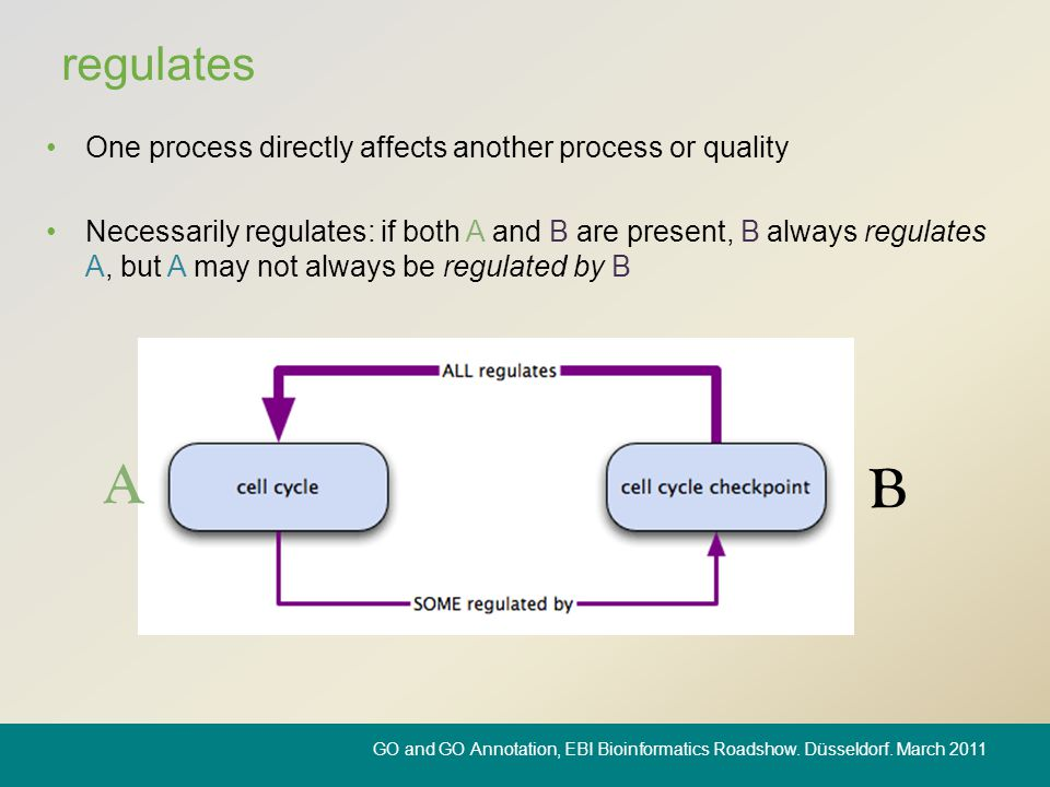 regulates One process directly affects another process or quality Necessarily regulates: if both A and B are present, B always regulates A, but A may