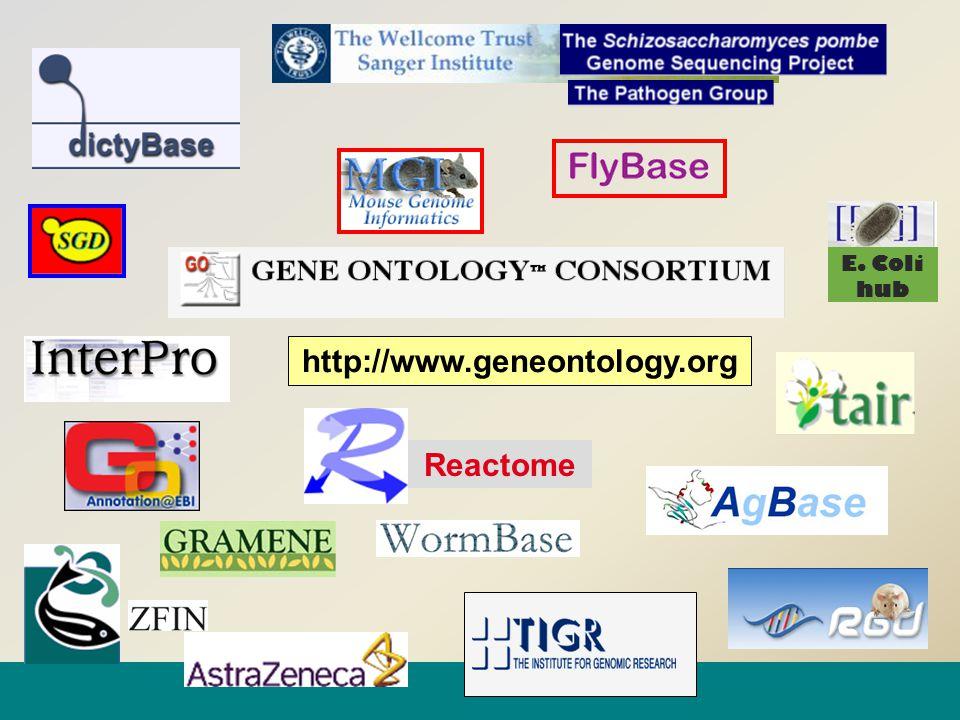 http://www.geneontology.org Reactome E. Coli hub
