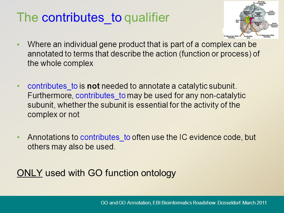 The contributes_to qualifier Where an individual gene product that is part of a complex can be annotated to terms that describe the action (function o