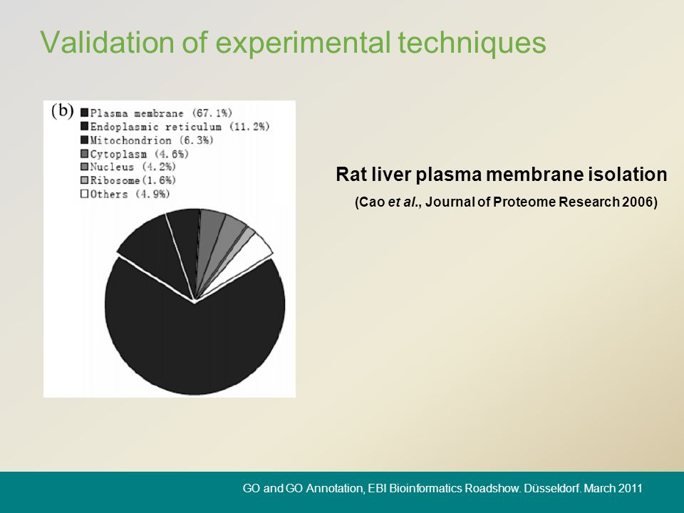 Validation of experimental techniques (Cao et al., Journal of Proteome Research 2006) Rat liver plasma membrane isolation GO and GO Annotation, EBI Bi