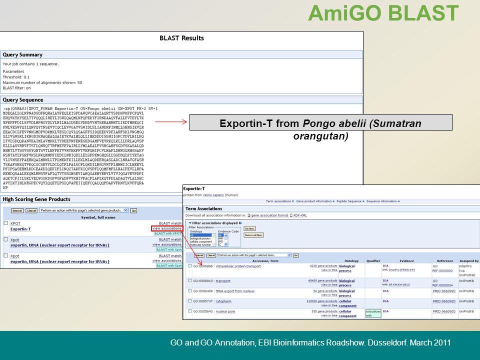 AmiGO BLAST Exportin-T from Pongo abelii (Sumatran orangutan) GO and GO Annotation, EBI Bioinformatics Roadshow.