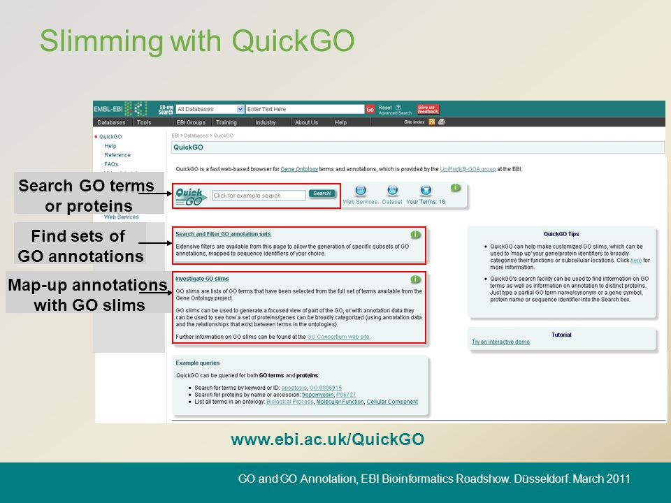Slimming with QuickGO www.ebi.ac.uk/QuickGO Map-up annotations with GO slims Search GO terms or proteins Find sets of GO annotations GO and GO Annotat