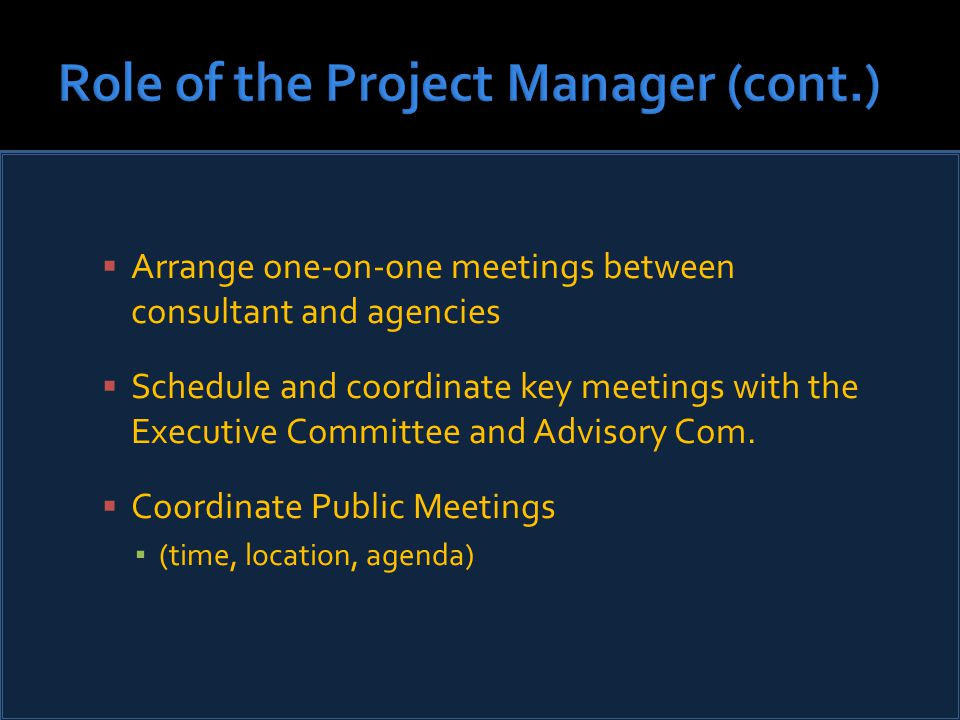  Arrange one-on-one meetings between consultant and agencies  Schedule and coordinate key meetings with the Executive Committee and Advisory Com.