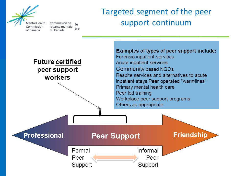 Targeted segment of the peer support continuum Professional Friendship Peer Support Formal Informal Peer Support Future certified peer support workers