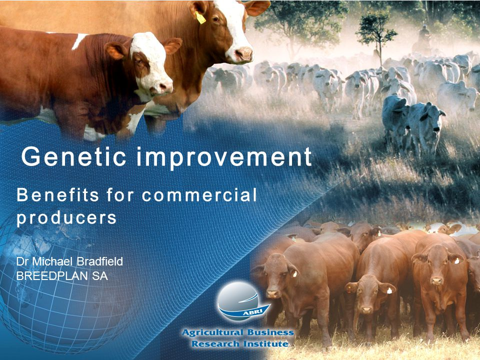 Genetic improvement Benefits for commercial producers Dr Michael Bradfield BREEDPLAN SA