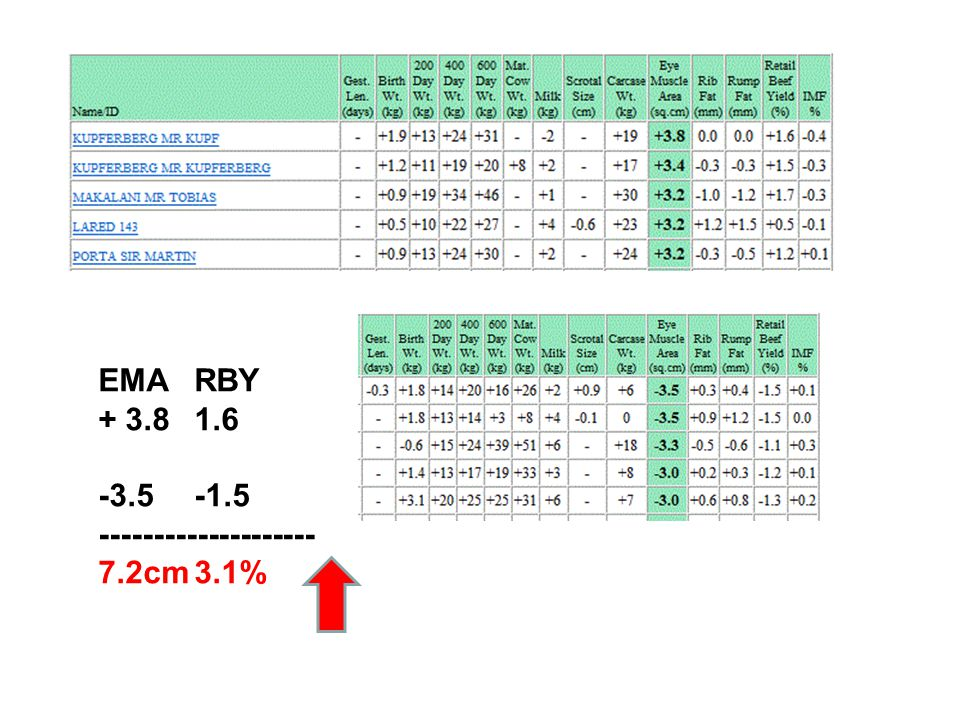 EMARBY + 3.81.6 -3.5-1.5 -------------------- 7.2cm3.1%