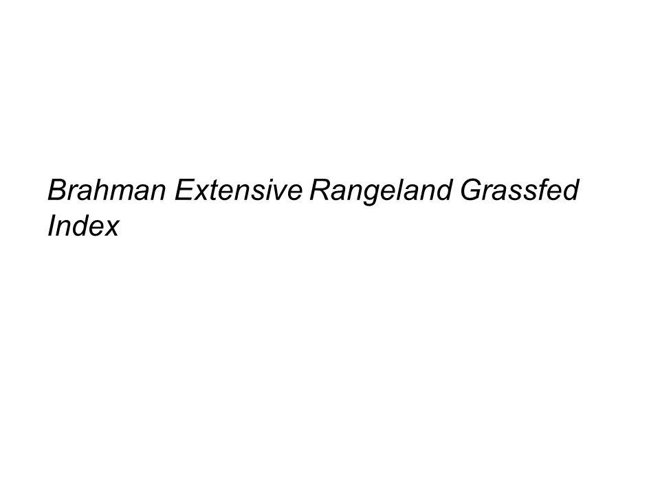Brahman Extensive Rangeland Grassfed Index