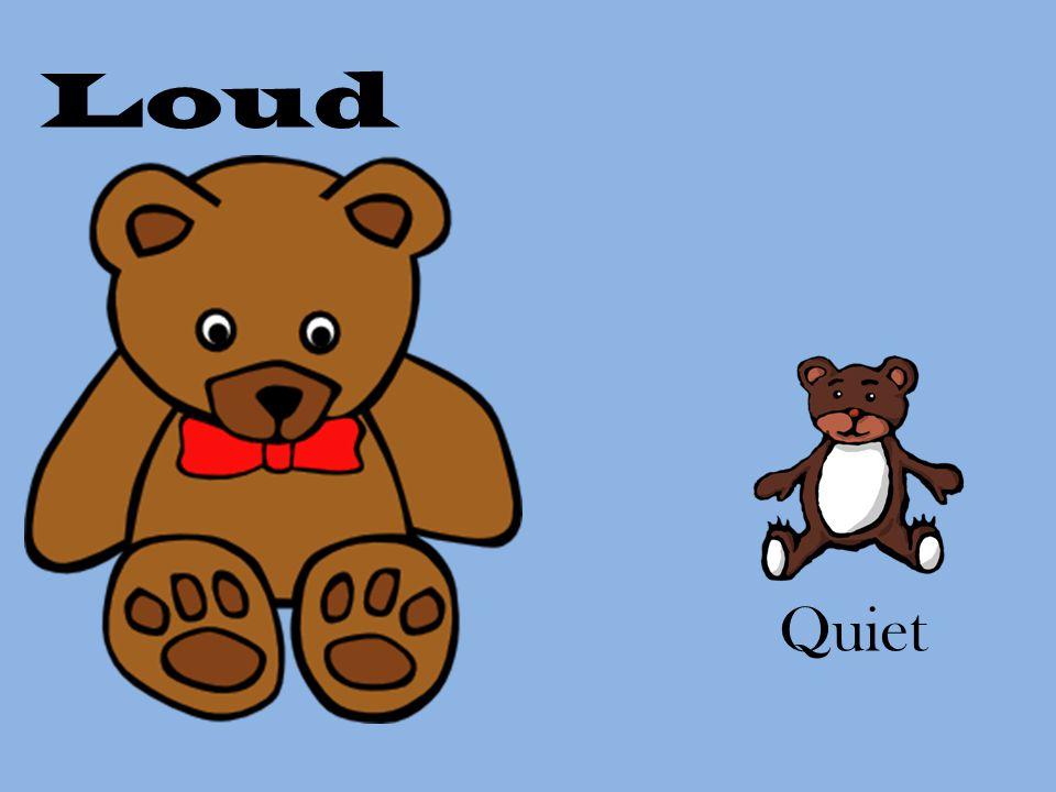 Loud Quiet