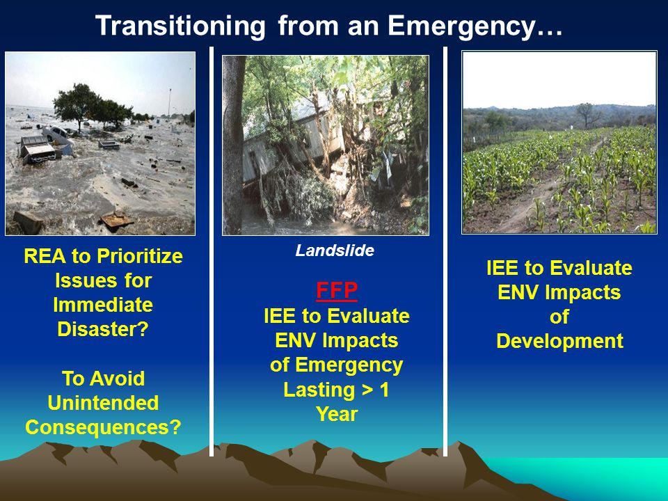 REA to Prioritize Issues for Immediate Disaster. To Avoid Unintended Consequences.