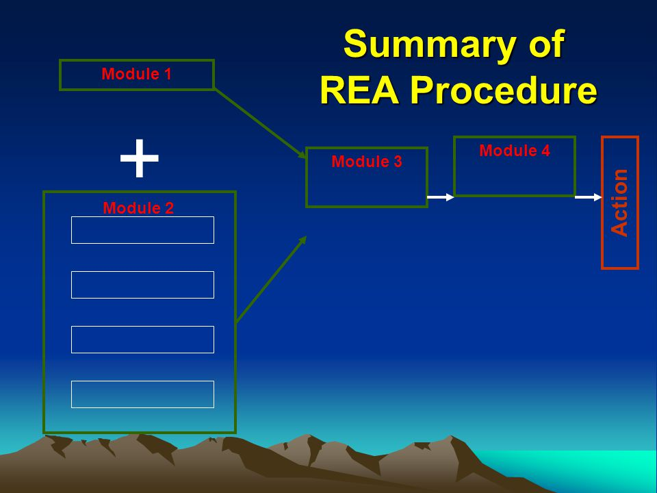 Module 1 + Module 3 Module 4 Action Module 2 Summary of REA Procedure REA Procedure