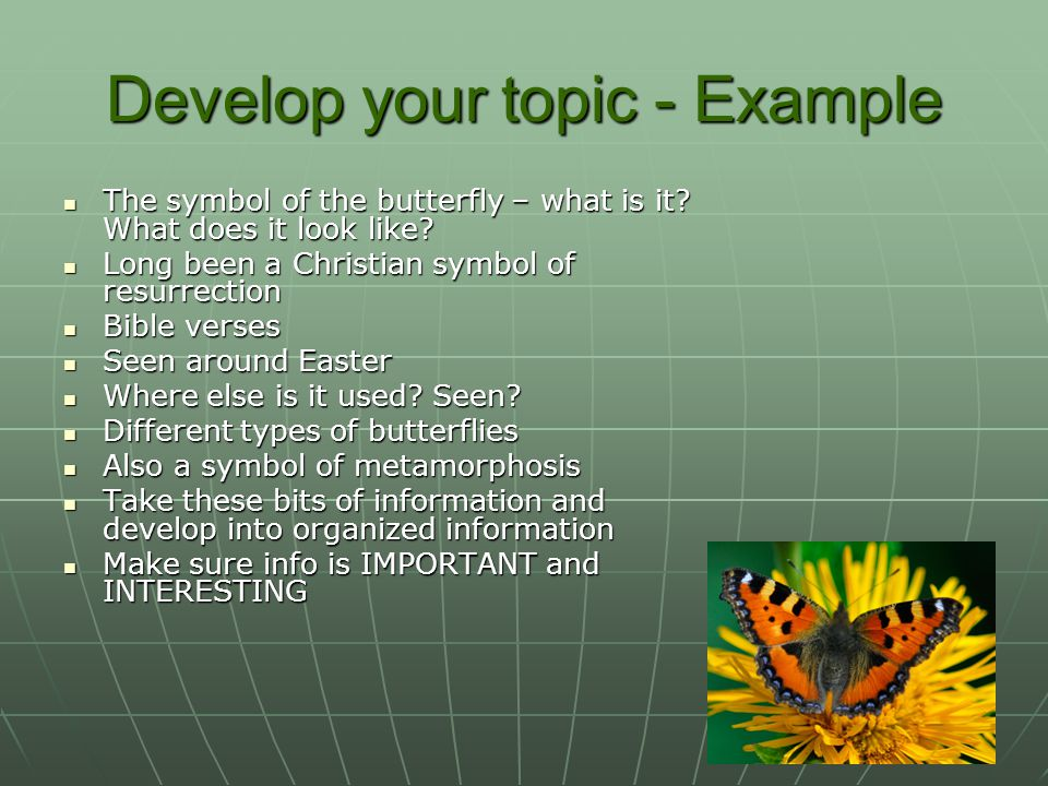 Develop your topic - Example The symbol of the butterfly – what is it.