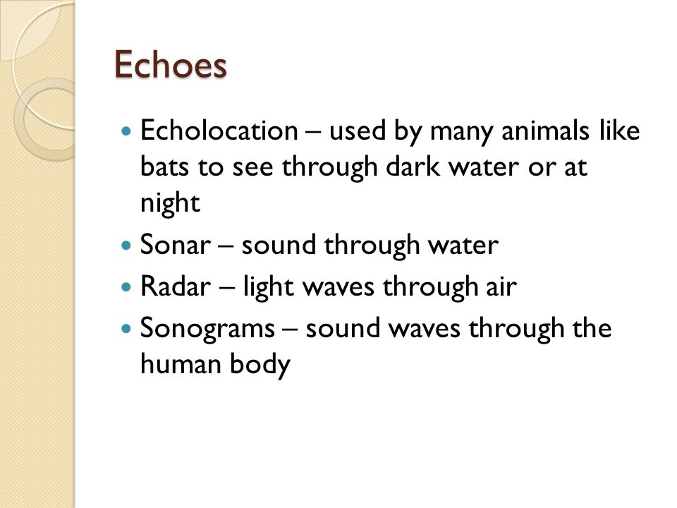 Echoes Echolocation – used by many animals like bats to see through dark water or at night Sonar – sound through water Radar – light waves through air