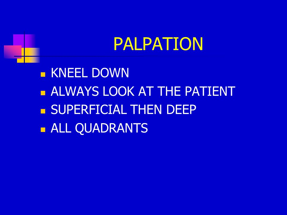 PALPATION KNEEL DOWN ALWAYS LOOK AT THE PATIENT SUPERFICIAL THEN DEEP ALL QUADRANTS