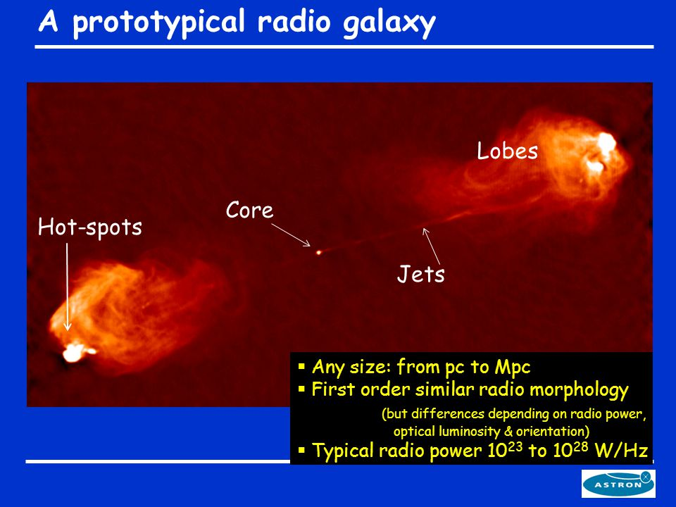 A prototypical radio galaxy  Any size: from pc to Mpc  First order similar radio morphology (but differences depending on radio power, optical luminosity & orientation)  Typical radio power 10 23 to 10 28 W/Hz Lobes Core Jets Hot-spots