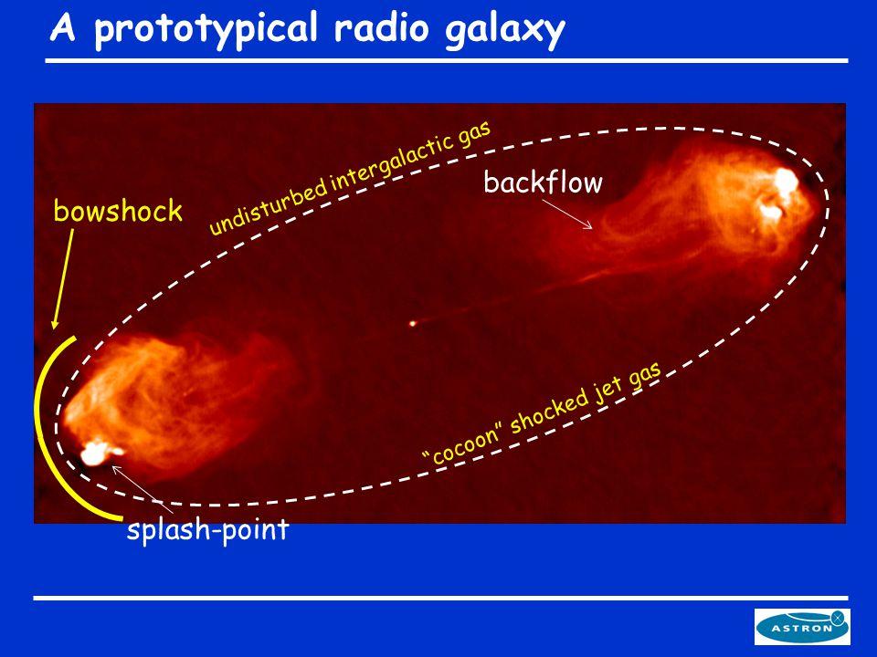 A prototypical radio galaxy cocoon shocked jet gas backflow splash-point bowshock undisturbed intergalactic gas