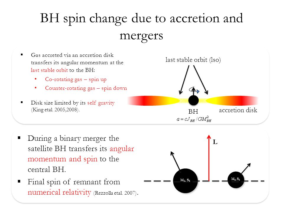 BH spin change due to accretion and mergers  Gas accreted via an accretion disk transfers its angular momentum at the last stable orbit to the BH: Co-rotating gas – spin up Counter-rotating gas – spin down  Disk size limited by its self gravity (King etal.
