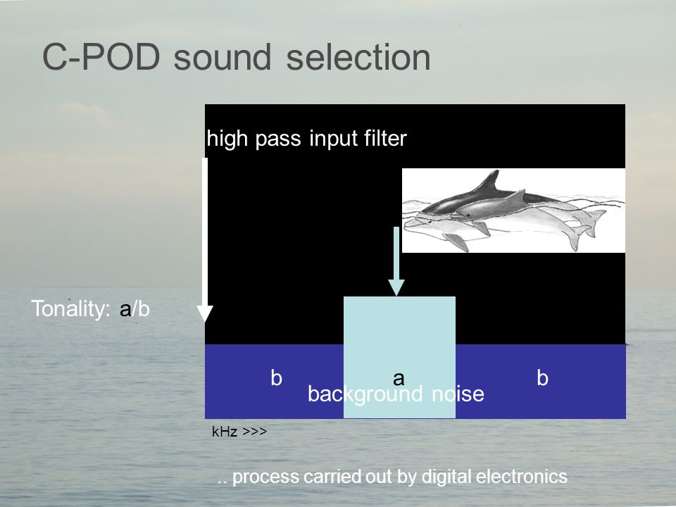 C-POD sound selection Tonality: a/b..