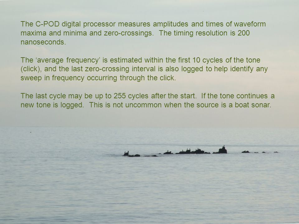 The C-POD digital processor measures amplitudes and times of waveform maxima and minima and zero-crossings.