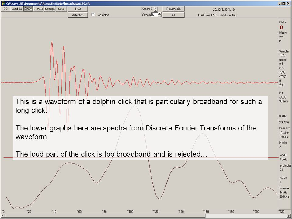 This is a waveform of a dolphin click that is particularly broadband for such a long click.