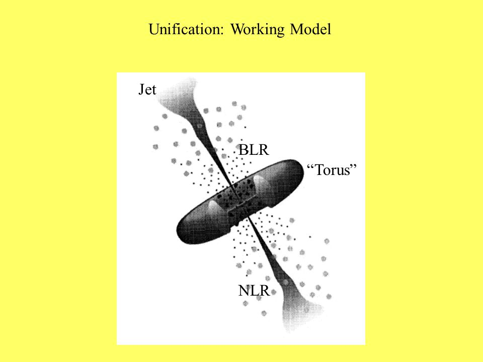 Unification: Working Model Torus BLR NLR Jet