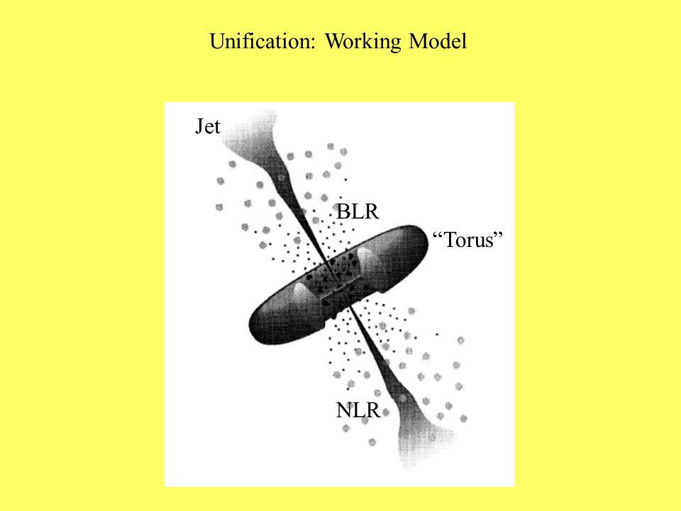 "Unification: Working Model ""Torus"" BLR NLR Jet"