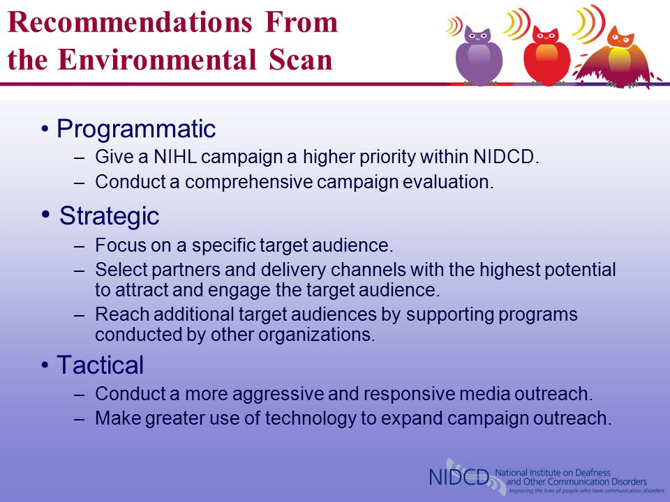 Lessons Learned From the Environmental Scan Programmatic –Give a NIHL campaign a higher priority within NIDCD. –Conduct a comprehensive campaign evalu