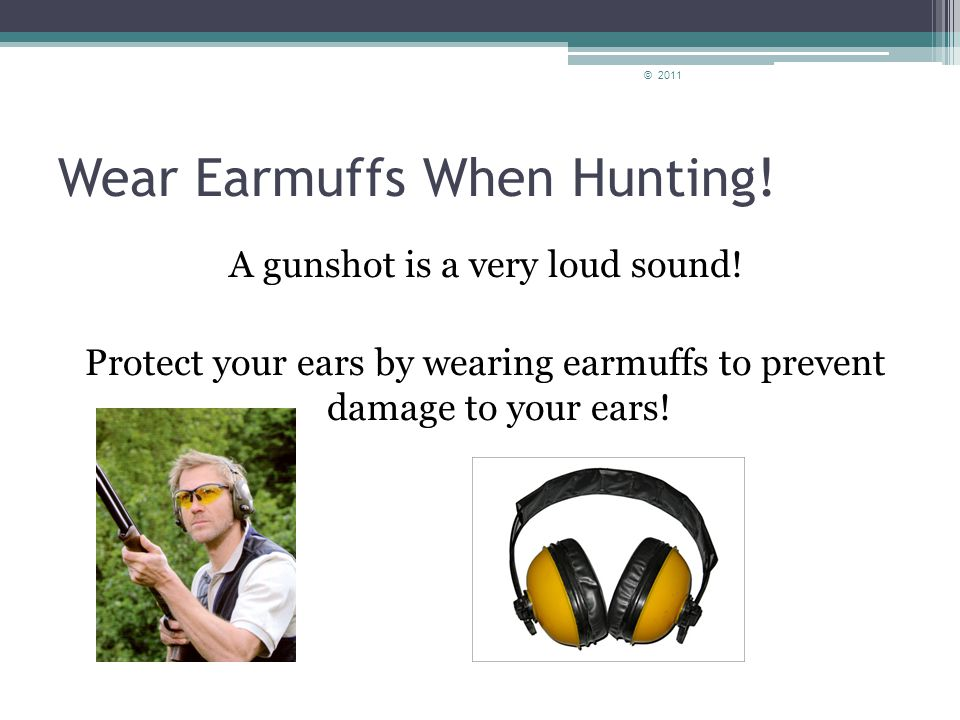 Types of Hearing Protection Ear plugsEarmuffs © 2011