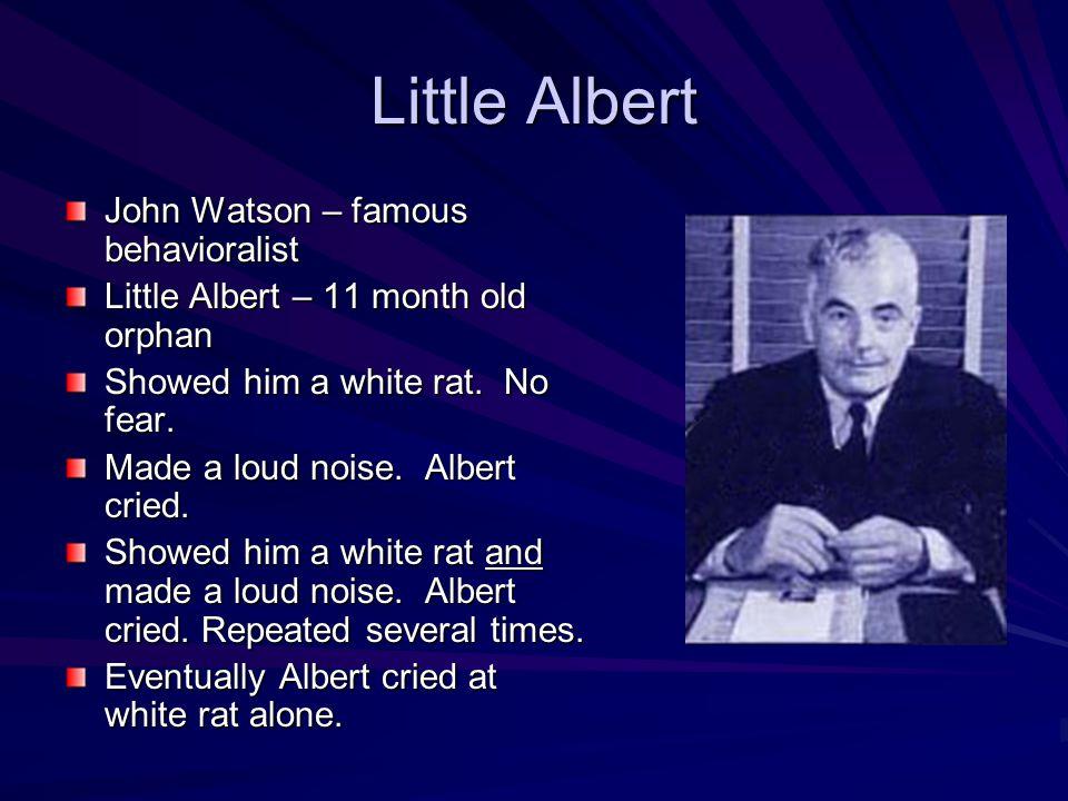 Little Albert John Watson – famous behavioralist Little Albert – 11 month old orphan Showed him a white rat. No fear. Made a loud noise. Albert cried.