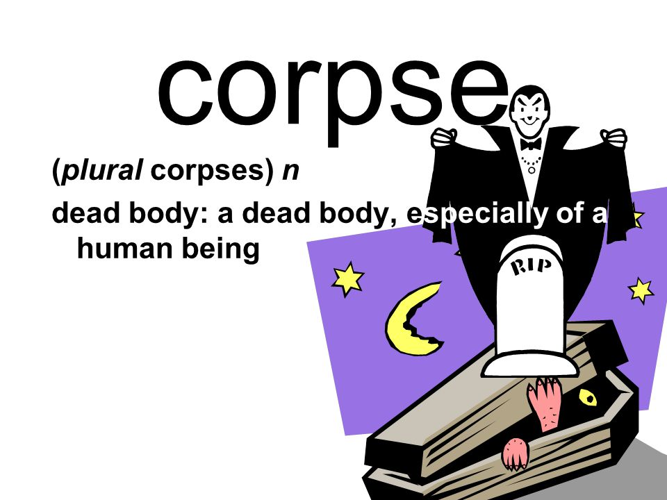 corpse (plural corpses) n dead body: a dead body, especially of a human being