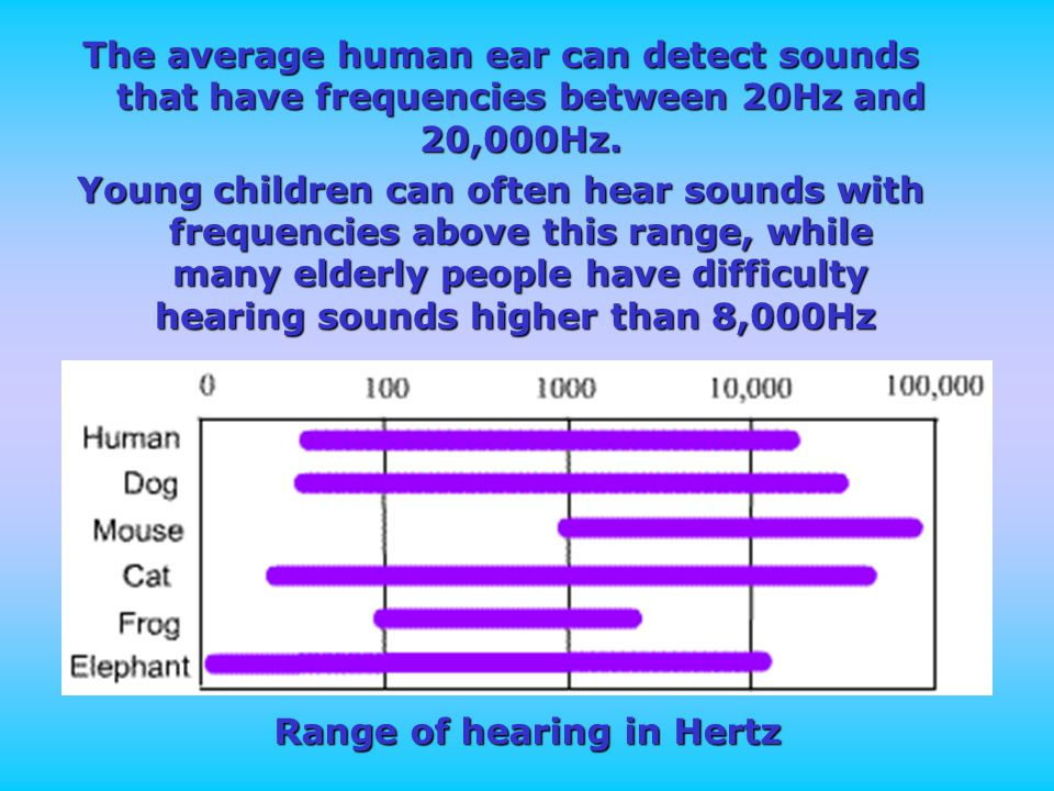 The average human ear can detect sounds that have frequencies between 20Hz and 20,000Hz.