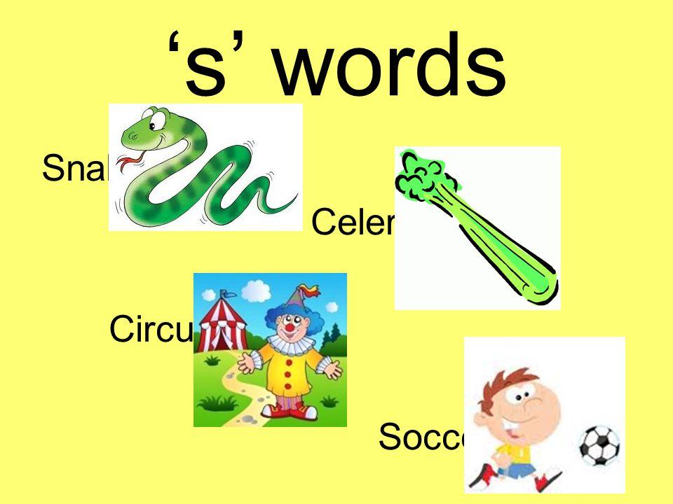 's' words Snake Celery Circus Soccer