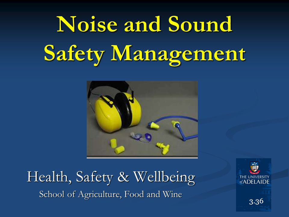 Noise and Sound Safety Management Health, Safety & Wellbeing School of Agriculture, Food and Wine