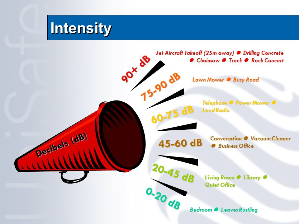 Intensity Decibels (dB) 90+ dB 75-90 dB 60-75 dB 45-60 dB 20-45 dB 0-20 dB Jet Aircraft Takeoff (25m away) Drilling Concrete Chainsaw Truck Rock Concert Lawn Mower Busy Road Telephone Power Mower Loud Radio Conversation Vacuum Cleaner Business Office Living Room Library Quiet Office Bedroom Leaves Rustling