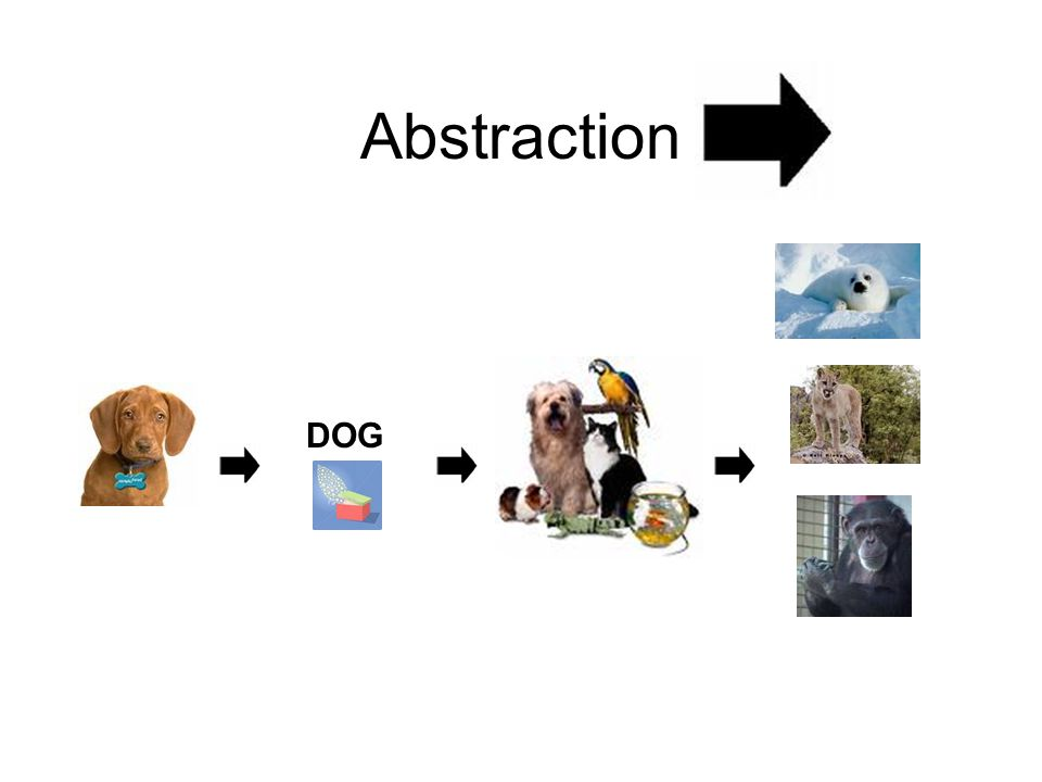 Abstraction DOG