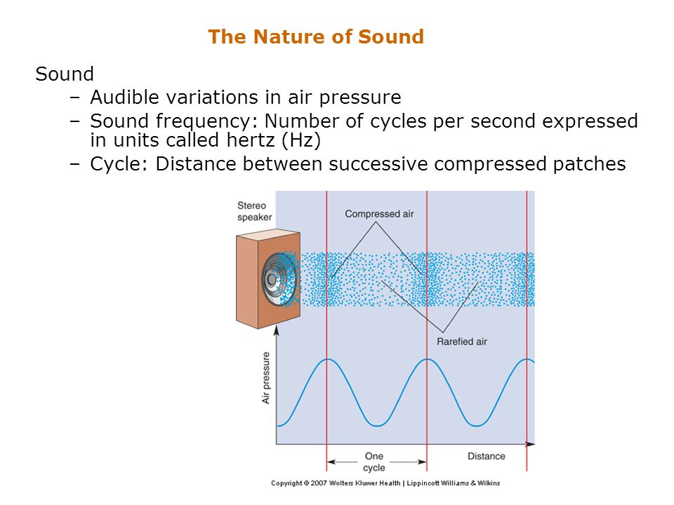 The Nature of Sound Sound –Audible variations in air pressure –Sound frequency: Number of cycles per second expressed in units called hertz (Hz) –Cycl