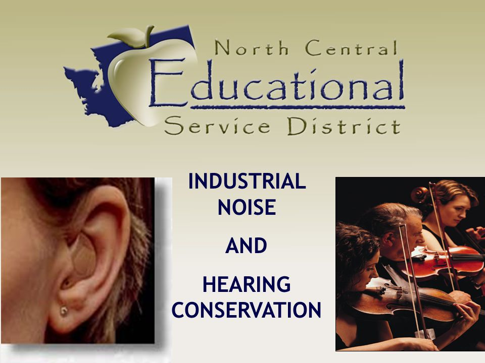 INDUSTRIAL NOISE AND HEARING CONSERVATION