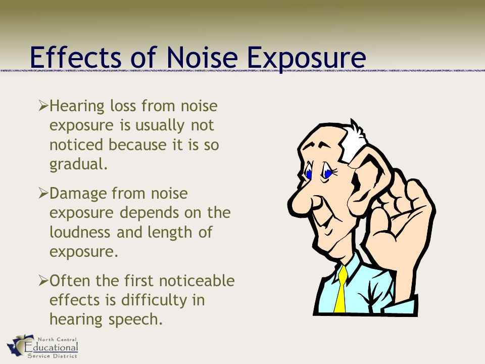 Effects of Noise Exposure  Hearing loss from noise exposure is usually not noticed because it is so gradual.