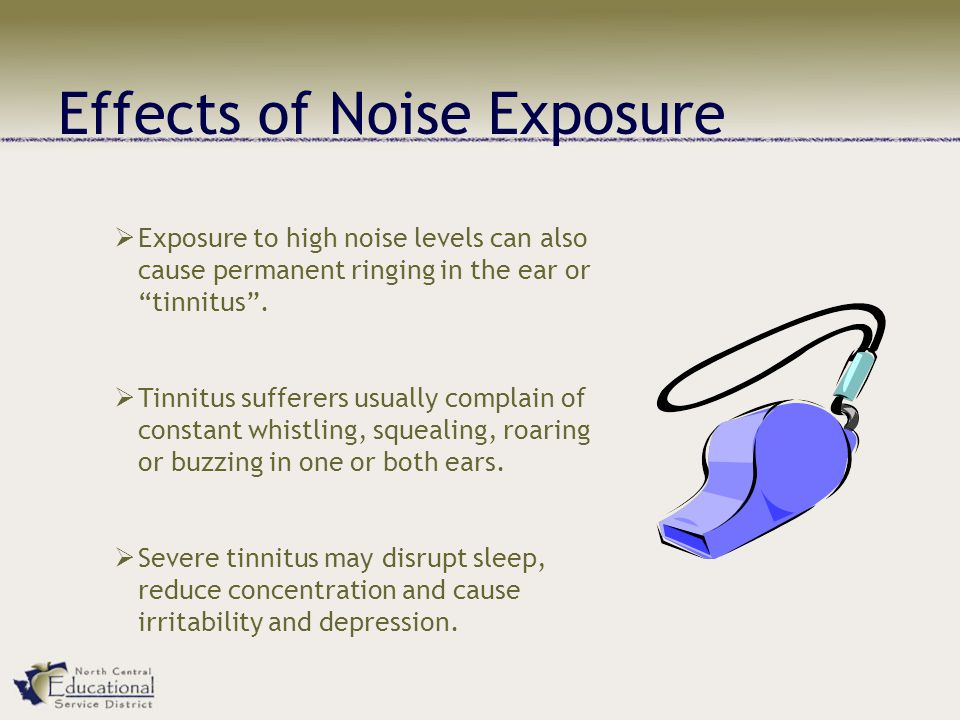 Effects of Noise Exposure  Exposure to high noise levels can also cause permanent ringing in the ear or tinnitus .