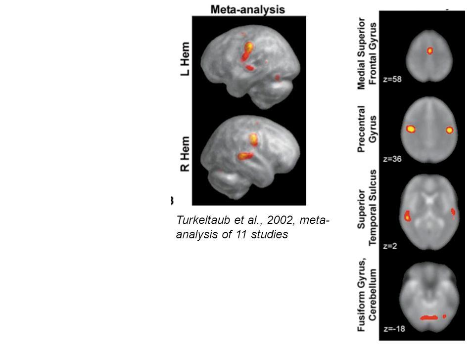 Turkeltaub et al., 2002, meta- analysis of 11 studies